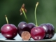 Can Dark Cherries Reduce Belly Fat?