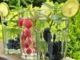Vitamin Infused Water 101 And How TO Make Your Own